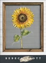 SCREEN~Rebeca Flott Arts -Lessons From a Sunflower