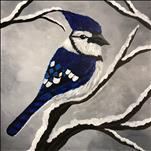 Blue Jay ADULTS ONLY