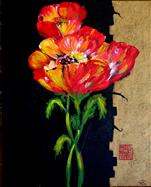 **NEW** Oriental Poppies
