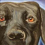 Peekaboo Paint Your Pet on a 12X12 Canvas-$55