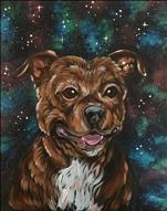 **GALAXY PAINT YOUR PET**