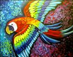 Prideful Parrot/BENEFITS BIRD HAVEN