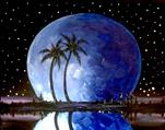 Florida Moon in Blue