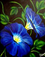 Morning Glories 2hr $35