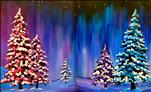 Winter Splendor PAINT THE SET! (Adults 18+)